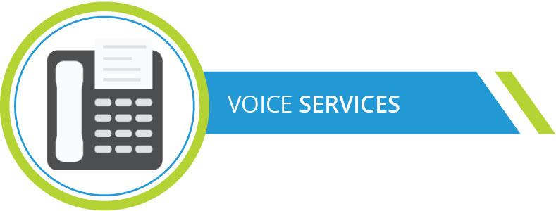 Voice-services